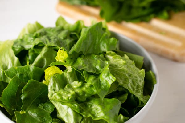 bowl of chopped lettuce