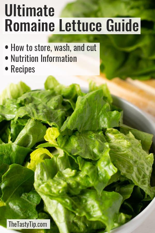 bowl of cut lettuce
